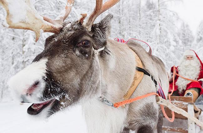 Rovaniemi, Santa Claus